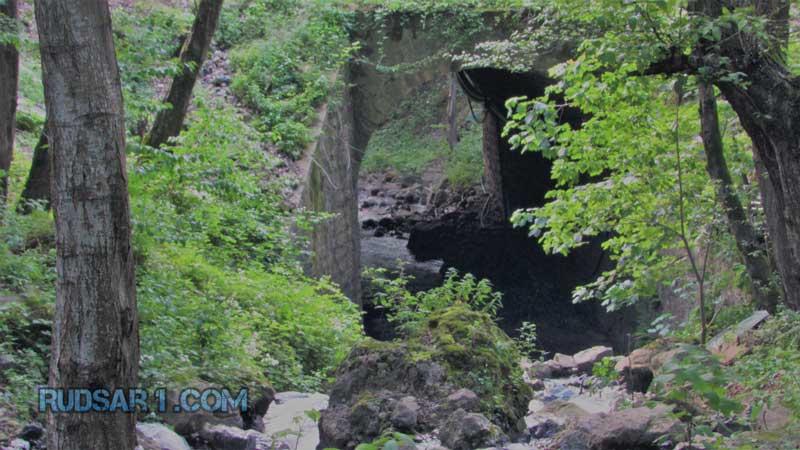 پارک جنگلی سفید آب رودسر